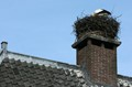 Stork Nest in the Chimney