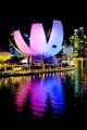 Art Science Museum - Singapore