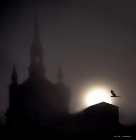 Sunrise over church with great blue heron in flight