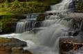 McLean Falls details