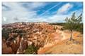 Lone Pine - Bryce Canyon USA