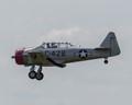 Pilot landing at an air show