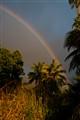 Kauai Morning Rainbow