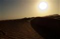 Brown Dunes