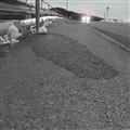 Hibernal sidewalk