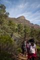 Trek to the peak