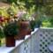 deckflowers2