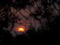 Sunset-4015782