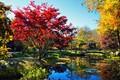 Fall In Gibbs Gardens