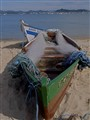 Brasil boat and nets