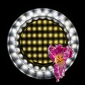 LEDs (ring and video) with Flower