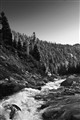 Snowmelt Creek, Sierras, Early Summer