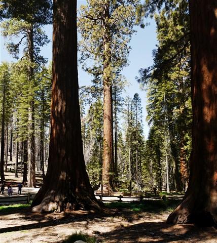 Yosemite_stitch