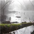 Foggy Chattahoochee