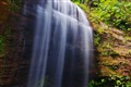 Deep Rain Forest Waterfall