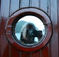 Self portrait in the porthole