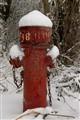 Abandoned Hydrant