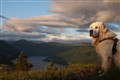 Sunset on a mountain hike