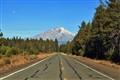 Hwy 89,  Mt.Shasta, CA