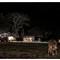 Dairy Farming at night 1