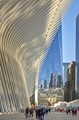 The Oculus and the Freedom Tower