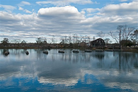 Stamford Conn. Coast Post Sandy