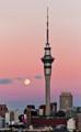 Sky City Tower Auckland