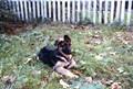 my puppy 1975