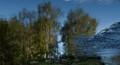 reflection canvas