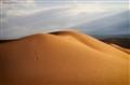 Erotic Dunes