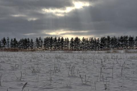 Gloomy Early Winter