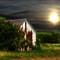 Barn 10-1-2012-5Cs