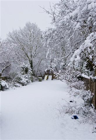 Garden_in_Snow