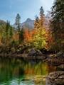 The autumn colours of Austria