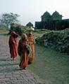 India 1964