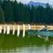 FZ30-Posts&Canoe: