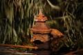 Rusted boiler