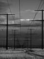 Power lines B&W