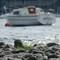 Coniston boat