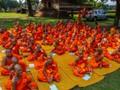 Novice Monk School