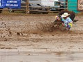 Competative event at a Montana rodeo.