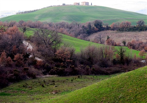 Sweet hills and house