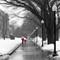 MFA Boston Snow & Rain  2319j