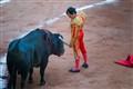 Facing the Bull