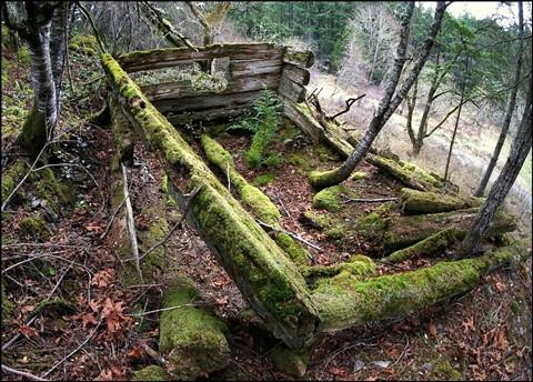 DSC04440ps-old settlers cabin