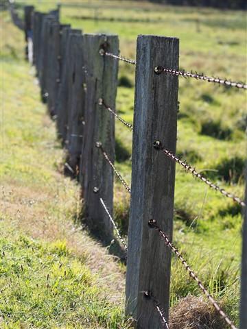Fence cliché