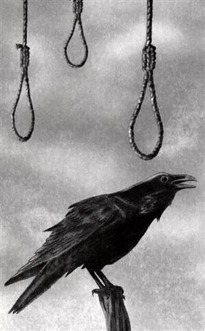 Raven111