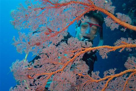 Jana behind corals