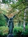 Passed angel