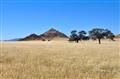 Prairie in Namibia